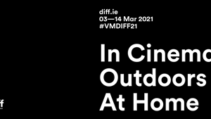 What to Expect at VMDIFF21